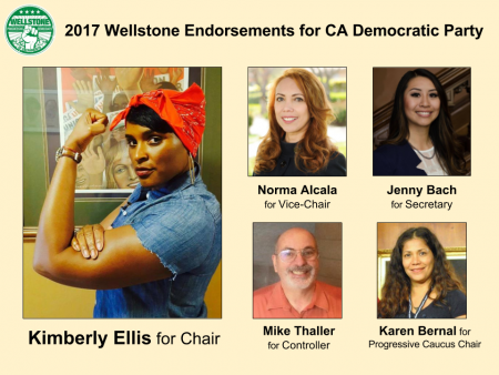 Wellstone 2017 CDP endorsments