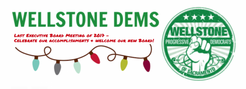 Wellstone Dems December e-board meeting